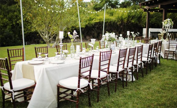 All valley party rentals all valley party rentals planning a wedding then let all valley party rentals do all the heavy lifting we have years of experience assisting in the planning and follow through of junglespirit